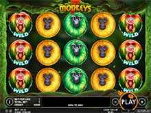 Lion the Lord Slot Machine - Play for Free With No Download