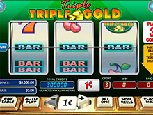 Double Gold Slot - Play Free WGS Casino Games Online
