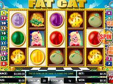 casino online 888 free dolphin reef